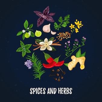 Illustrazione vettoriale spezie ed erbe aromatiche. bordo del cerchio con piante. disegno astratto delle erbe
