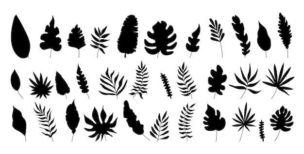 Illustrazioni vettoriali silhouette di palme e foglie