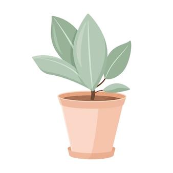 Illustrazione vettoriale isolato su sfondo bianco. pianta della casa del fumetto in un vaso di argilla ficus in crescita. elemento di design