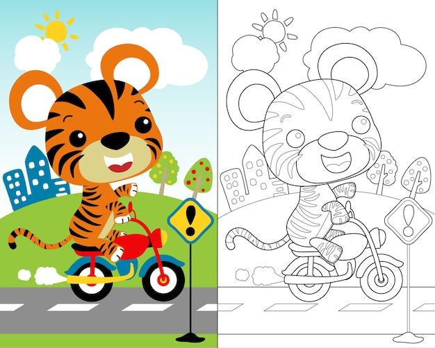 Vettore del piccolo fumetto della tigre sulla motocicletta, libro da colorare.