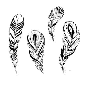 Insieme delle piume ornamentali di vettore delle piume di uccello decorative isolate su white