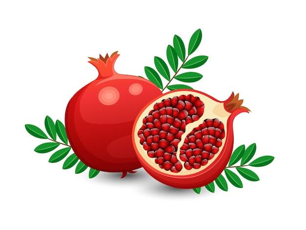 Frutti del melograno di vettore isolati su fondo bianco. vettore, illustrazione