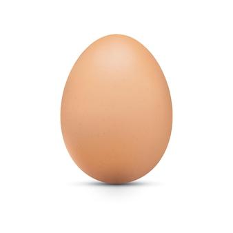 Uovo marrone di pollo realistico di vettore con ombra uovo di gallina intero primo piano 3d isolato su sfondo bianco