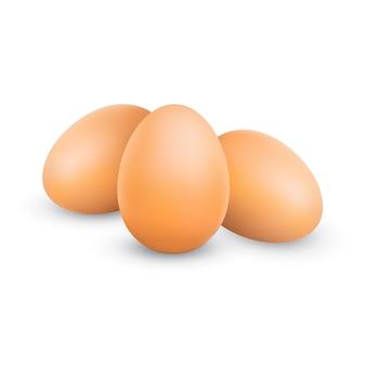 Uova marroni di pollo realistiche di vettore mazzo di tre uova di gallina isolate su fondo bianco