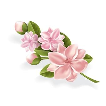 Vettore realistico lotos ciliegia sakura ramo di un albero in fiore fiori chiusi
