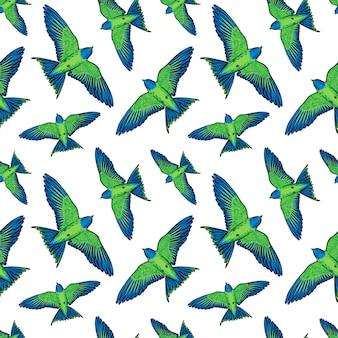 Reticolo senza giunte con pappagalli verdi su sfondo bianco