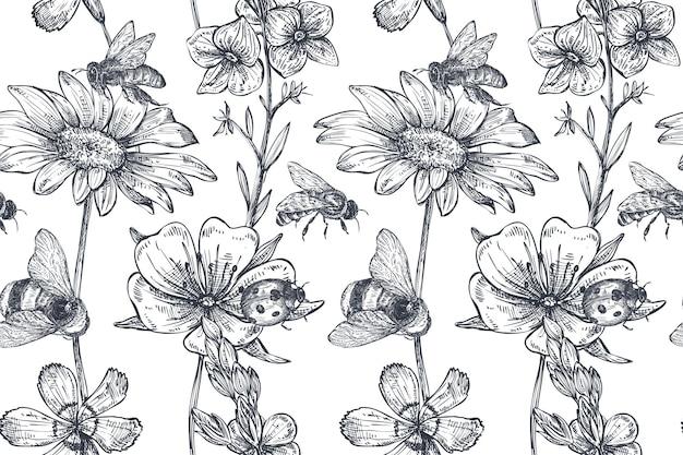 Reticolo senza giunte con camomilla disegnata a mano, fiori di campo, erbe aromatiche, ape. illustrazione infinita monocromatica in stile schizzo.