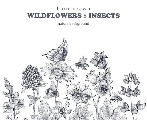 Reticolo senza giunte con camomilla disegnata a mano, fiori di campo, erbe, farfalle, ape. illustrazione infinita monocromatica in stile schizzo.