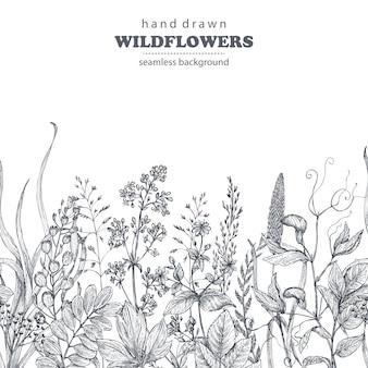 Reticolo senza giunte con erbe e fiori di campo disegnati a mano su sfondo bianco