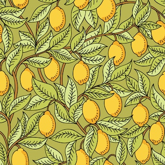 Reticolo senza giunte con i limoni