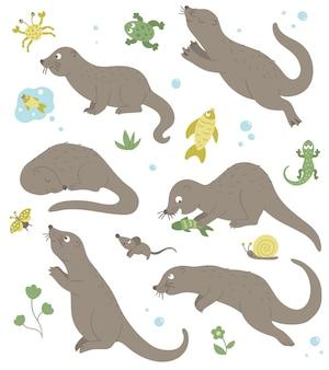 Insieme di vettore delle lontre divertenti piatto stile cartone animato in diverse pose con rana, granchio, pesce, clip art lucertola. illustrazione sveglia degli animali del bosco.