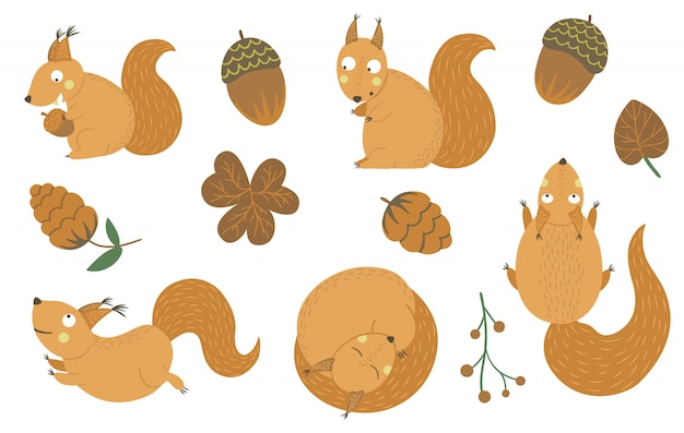 Insieme di vettore degli scoiattoli divertenti piatti disegnati a mano di stile del fumetto in diverse pose con cono, ghianda, clipart foglia. illustrazione di autunno carino di animali del bosco