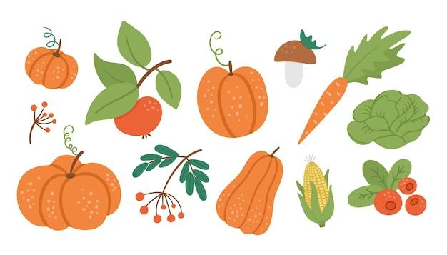 Set vettoriale di simpatiche verdure autunnali, frutta e bacche collezione in stile piatto con zucche carote