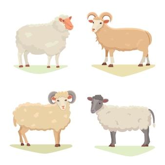 Le pecore sveglie e la ram stabilite di vettore hanno isolato la retro illustrazione. siluetta diritta delle pecore su bianco. farm fanny milk animali giovani. stile cartone animato