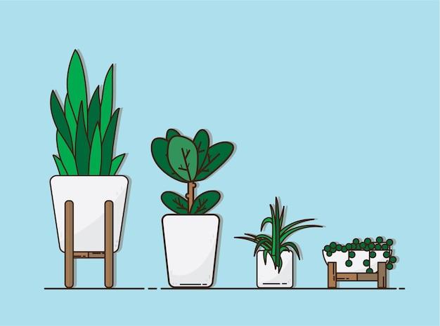 Pianta verde stabilita di vettore in vaso bianco, illustrazione delle piante da appartamento, fondo di bule