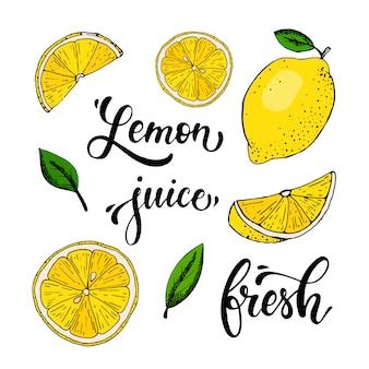 Insieme di vettore di limoni disegnati a mano, foglie e citazioni