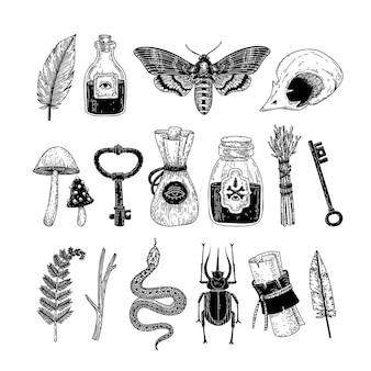 Insieme di vettore degli elementi occulti magici disegnati a mano nello stile grafico.