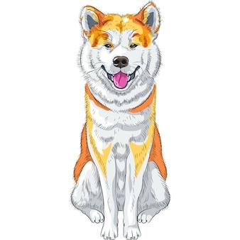 Sorrisi della razza giapponese akita inu del cane di schizzo di vettore