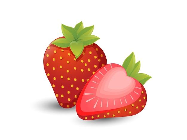 Frutti di fragole vettoriali isolati su sfondo bianco. vettore, illustrazione