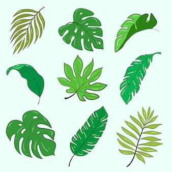 Insieme del modello di vettore di piante e fiori. illustrazione di riserva.