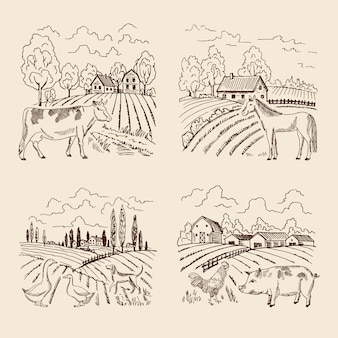 Vettore villaggio e grande campo. paesaggio con agricoltura e animali. set di illustrazioni in retro