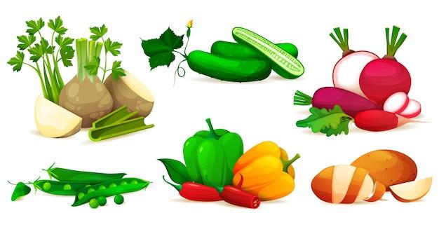Set di verdure icone vettoriali di prodotti freschi