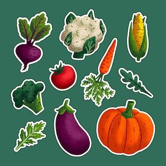Set di adesivi vegetali Vettore Premium