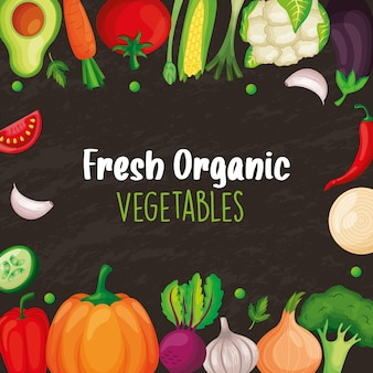 Banner di verdure per negozio di mercato. illustrazione vettoriale