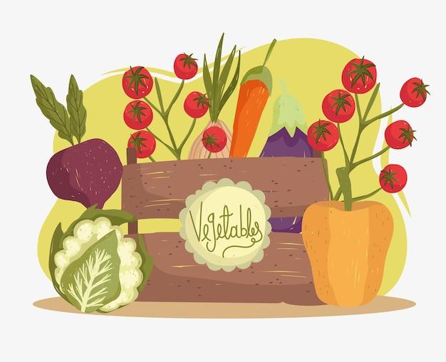 Verdure cibo fresco