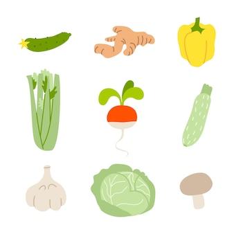 Verdura e frutta Vettore Premium