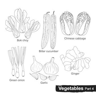 Raccolta disegnata a mano di verdure parte 4