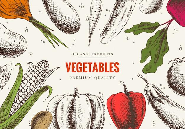 Disegnato a mano di verdure. progettazione di menu di mercato. poster di alimenti biologici a colori. grafica lineare. cornice di cibo sano in stile vintage