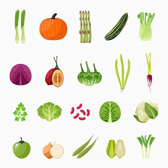 Illustrazione di raccolta di icone di verdure