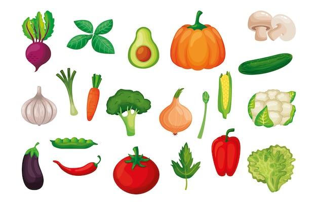 Insieme di set di verdure isolato su sfondo bianco. illustrazione vettoriale