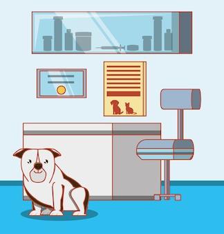 Ufficio veterinario con animali
