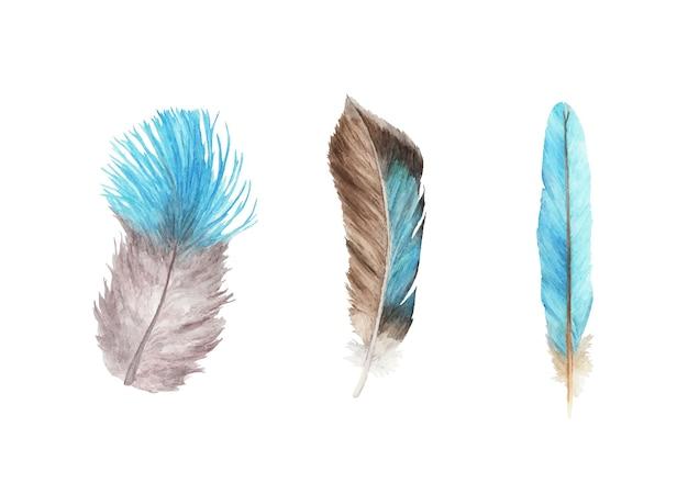 Set di piume vibranti. piuma d'uccello. ali in stile boho. illustrazione dell'acquerello.