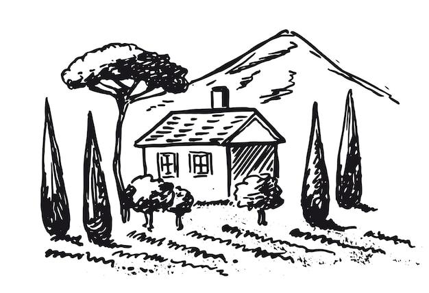 Vigneti paesaggio delle piantagioni di vite illustrazioni disegnate a mano
