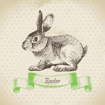 Sfondo vintage con coniglio di pasqua. illustrazione disegnata a mano