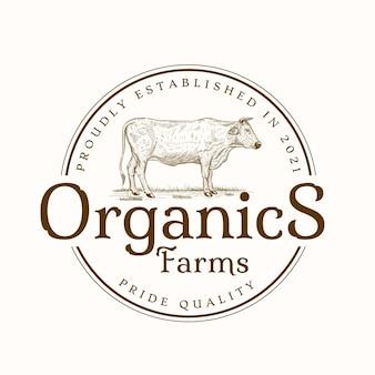 Modello di logo dell'emblema del negozio di prodotti biologici di manzo vintage vettore premium