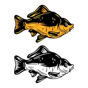 Retro illustrazione isolata del pesce d'annata della carpa su un fondo bianco.