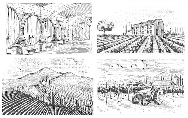 Paesaggio di vigneti incisi a mano vintage, campi tuskany