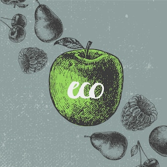 Illustrazione di cibo vintage. banner disegnato a mano, carta, flyer. frutta in stile inciso, scritte eco