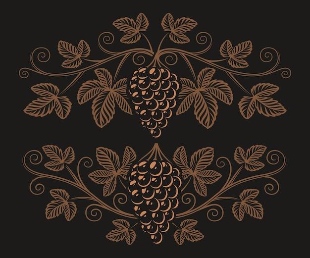 Illustrazione d'epoca di un ramo d'uva sullo sfondo scuro. elemento di design per il marchio di alcol.