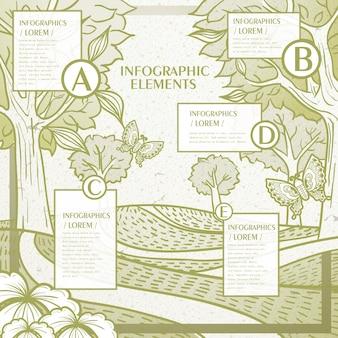 Modello di infografica vintage con motivo floreale e farfalle