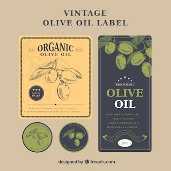 Vintage etichette di olio di oliva con diverse forme