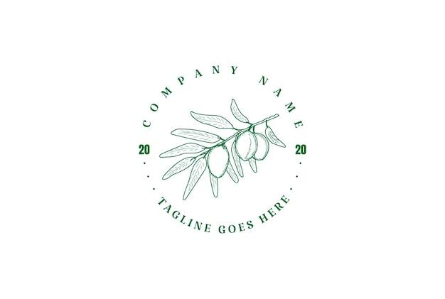 Vintage retrò olio d'oliva frutta natura logo design vector