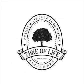 Modello logo albero vintage.