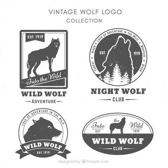 Vintage wild lupo logo collectio