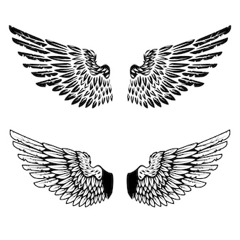 Ali d'annata su fondo bianco. elementi per logo, etichetta, emblema, segno, marchio. illustrazione.