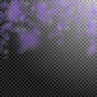 Petali di fiori viola che cadono. potenti fiori romantici che cadono pioggia. petalo volante su sfondo quadrato trasparente. amore, concetto di romanticismo. invito a nozze autentico.